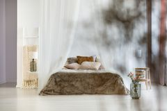 Brown pillows and fur coverlet. In sophisticated interior of bohemian bedroom with canopy and ladder blanket rack Royalty Free Stock Photo