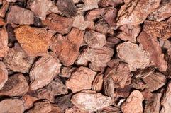 Pine bark nuggets Stock Photo