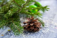 Brown Pine Cone With Pine Tree Leaves Shallow Focus Photography Royalty Free Stock Photos