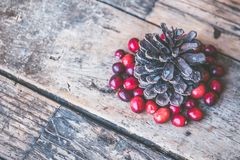 Brown Pine Cone Surrounded by Red Cranberry Photography Stock Photos