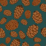 Brown pine cones,  seamless background. Brown pine cones, fir cones seamless pattern with black contours, tattoo style Stock Photos