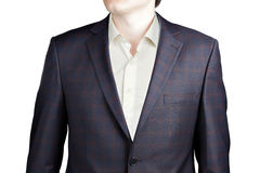 Brown Plaid with Blue Windowpane Suit Stock Photography