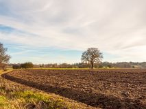 Brown ploughed agricultural field outside farm landscape sky gro. Und dirt tree; essex; england; uk Royalty Free Stock Photos
