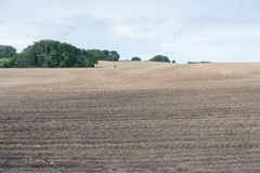 Brown ploughed field under cloudy sky after harvest Stock Image
