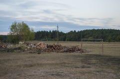 Brown pole z drzewami dalekimi Zmrok - niebieskie niebo i trawa upadek Obrazy Royalty Free