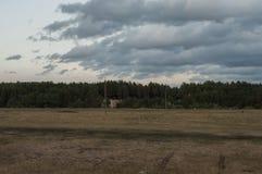 Brown pole z drzewami dalekimi Zmrok - niebieskie niebo i trawa upadek Obrazy Stock