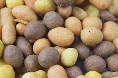 Brown pomarańczowa piwna przekąska, dokrętki w crispy shell-1 zdjęcie royalty free