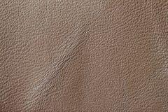 Brown prawdziwej skóry tekstury tło z zmarszczeniem, zagniecenie powierzchnia Zakończenie naturalna zbożowa krowa obrazy royalty free
