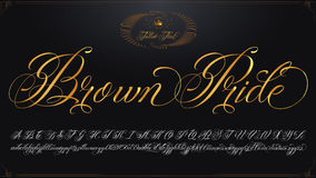 Brown Pride golden lettering. Hand drawn vector calligraphy tattoo alphabet with numbers Stock Photography
