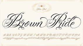 Brown Pride typescript. Handmade vector calligraphy tattoo alphabet with numbers Stock Photography