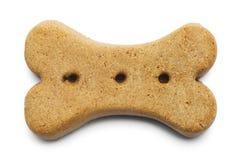Brown Psia kość Zdjęcia Royalty Free