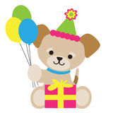Brown Puppy Birthday Stock Image