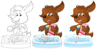 Brown puppy brushes the teeth. Three versions of clip-art (black-and-white and color drawings with black and color contours): Puppy brushing the teeth in a