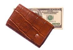 Brown purse Stock Image