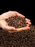 Brown-Röstkaffeebohnen, Samen auf dunklem Hintergrund Espressodunkelheit, Aroma, schwarzes Koffeingetränk Nahaufnahmeenergiemokka lizenzfreie stockfotografie