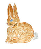 Brown rabbit illustration Royalty Free Stock Images