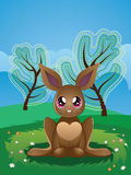 Brown Rabbit on Lawn Royalty Free Stock Image