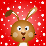 Brown rabbit with snowy background Royalty Free Stock Photography