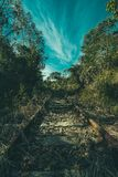 Brown Rail Way Near Green Trees Under Cloudy Blue Sky at Daytime stock photography
