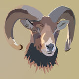 Brown RAM's head. Vector illustration. Royalty Free Stock Photography