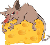Rat and cheese piece cartoon Royalty Free Stock Image