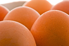 Brown raw eggs Royalty Free Stock Photography