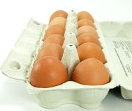 Brown raw eggs Stock Photography