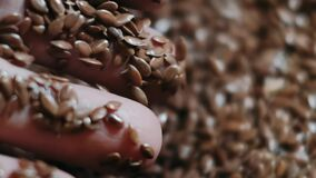 Brown raw flax seeds linseed as natural food background or grain texture. Top down view.