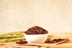 the brown raw rice in bowl with  dried rice plant on wooden tabl Royalty Free Stock Images