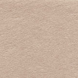 Brown recycled paper texture with vignette Stock Photography