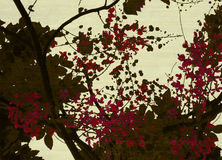 Brown and red blossom print on cream background Royalty Free Stock Photography