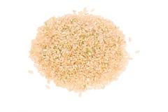 Brown-Reis lizenzfreie stockbilder