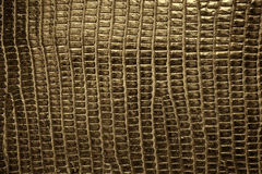 Brown reptile leather texture background Royalty Free Stock Photo