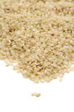 Brown rice Stock Images