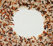 Brown rice. Is popular to eat Royalty Free Stock Image