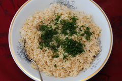 Brown rice Stock Image