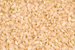 Brown rice as background Royalty Free Stock Photos