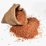 Brown rice. In bag, white isolate Royalty Free Stock Photo