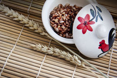 Brown rice in the bowl Stock Photography