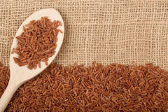 Brown rice. On burlap fabric Royalty Free Stock Images
