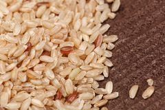 Brown rice Royalty Free Stock Image