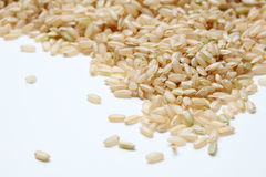 Brown Rice closeup. Closeup of uncooked, natural California Brown Rice, on light-colored background Stock Photography