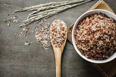 Brown Rice. /Coarse rice on wooden spoon with boiled rice. Selective focus royalty free stock image