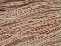 Brown rice dried noodle stock image
