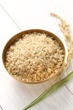 Brown rice with ear of rice Royalty Free Stock Images