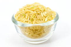 Brown Rice in a glass bowl. Royalty Free Stock Image
