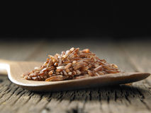 Brown rice healthy food Stock Image