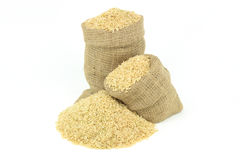 Brown rice over white. Still picture displaying brown rice  spilled on pile and in burlap sacks over white background Stock Image
