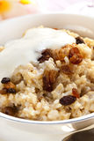 Brown Rice Porridge with Sultanas. Bowl of creamy brown rice porridge topped with sultanas, yogurt and cinnamon.  Delicious, healthy eating Royalty Free Stock Images
