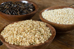 Brown Rice, Quinoa and Wild Rice Royalty Free Stock Photos